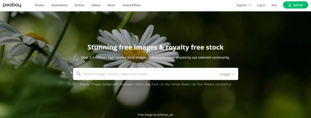 download royalty free images